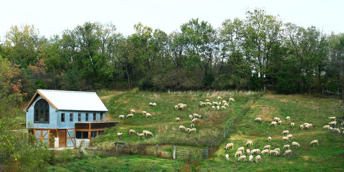 Green Dirt Farm Tours